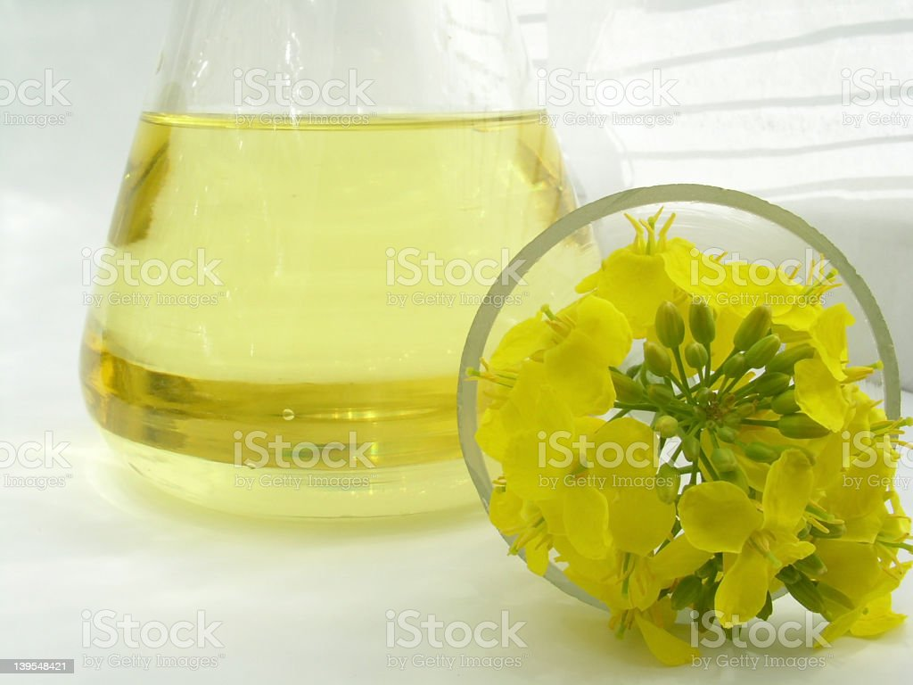 Essential oil on a Erlenmeyer flask and flowers stock photo