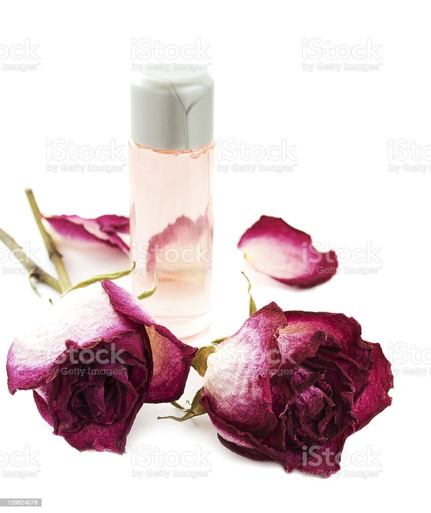 Essential oil with dry rose royalty-free stock photo