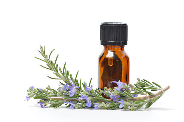 essential oil with sprigs of fresh rosemary - aromatherapy stock photos and pictures