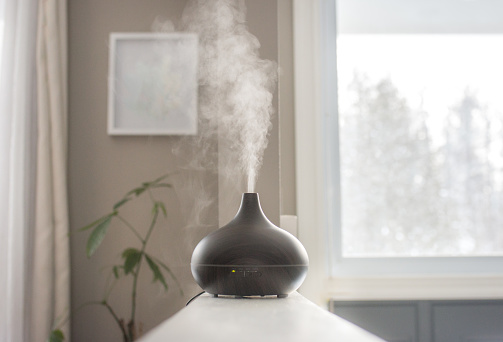 Essential oils diffusing at home in the morning light in Ottawa, ON, Canada