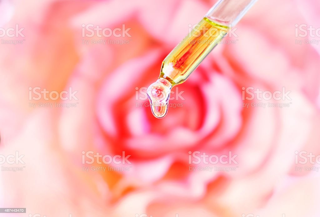 Essential rose oil water dropping from pipette to bottle. Aromatherapy. stock photo