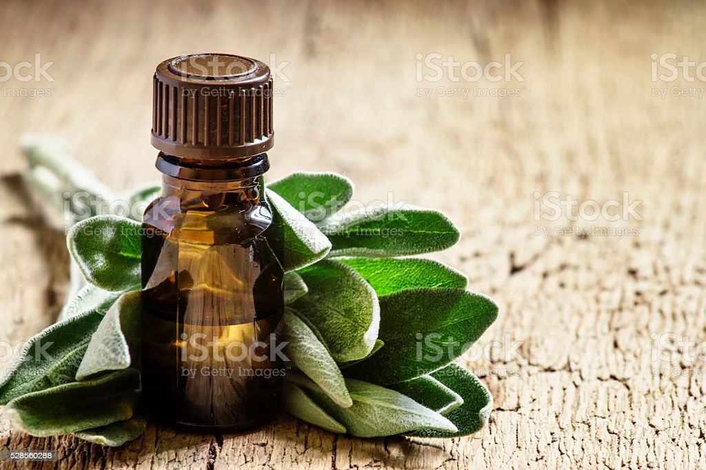 Essential sage oil, for aromatherapy, fresh sage leaves stock photo