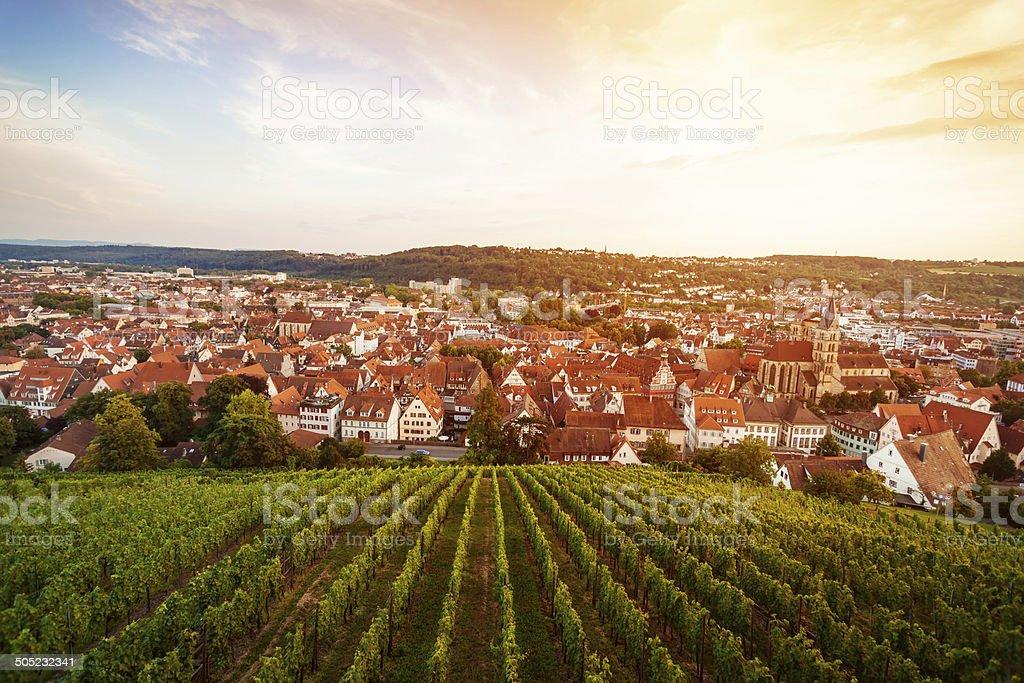 Esslingen am Neckar, Germany - view from the castle stock photo