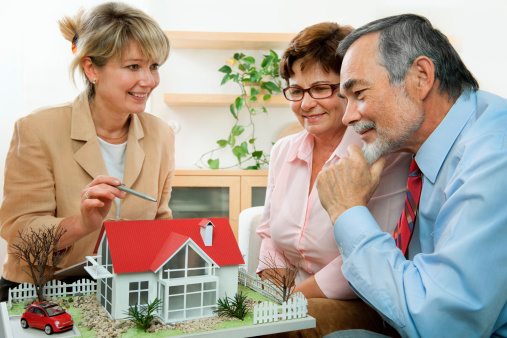 594910248 istock photo Estate agent selling a house off plan to a couple 119620750