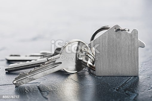 istock estate concept with key, keychain with house symbol, stone background 835276712