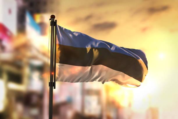 estonya bayrağı city karşı gündoğumu arka arka plan bulanık - estonya stok fotoğraflar ve resimler