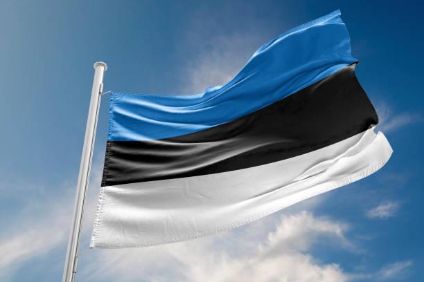 Bandera de Estonia está agitando contra el cielo azul - foto de stock