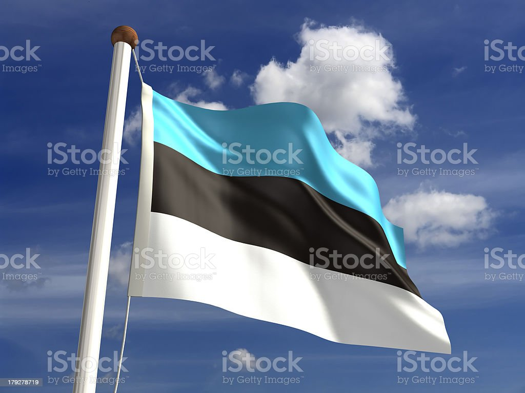 Estonia flag (with clipping path) stock photo