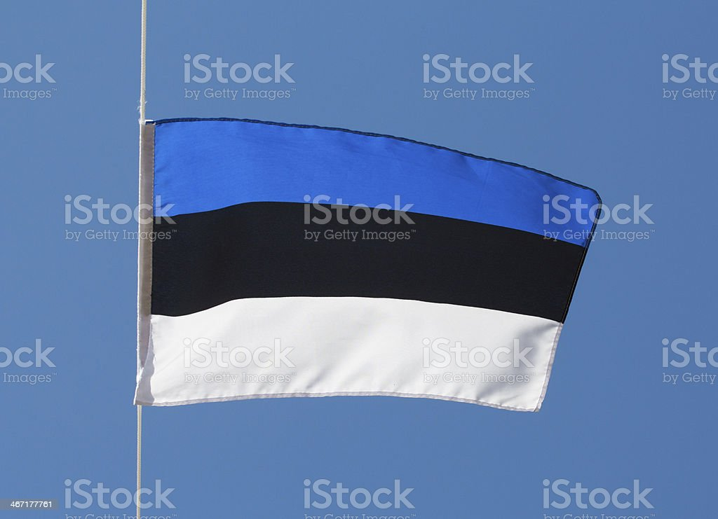 Estonian flag in wind against the sky stock photo