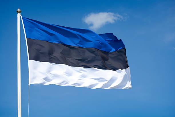 estonian  flag - estonya stok fotoğraflar ve resimler