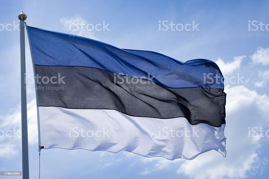 Estonian  flag stock photo