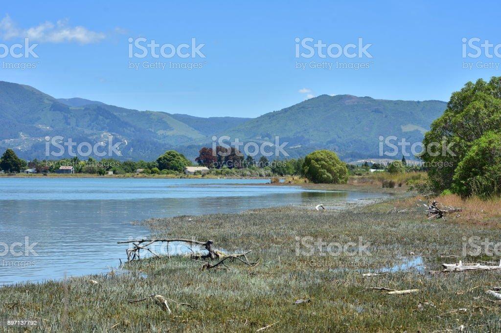 Estuary and coastal marshes stock photo