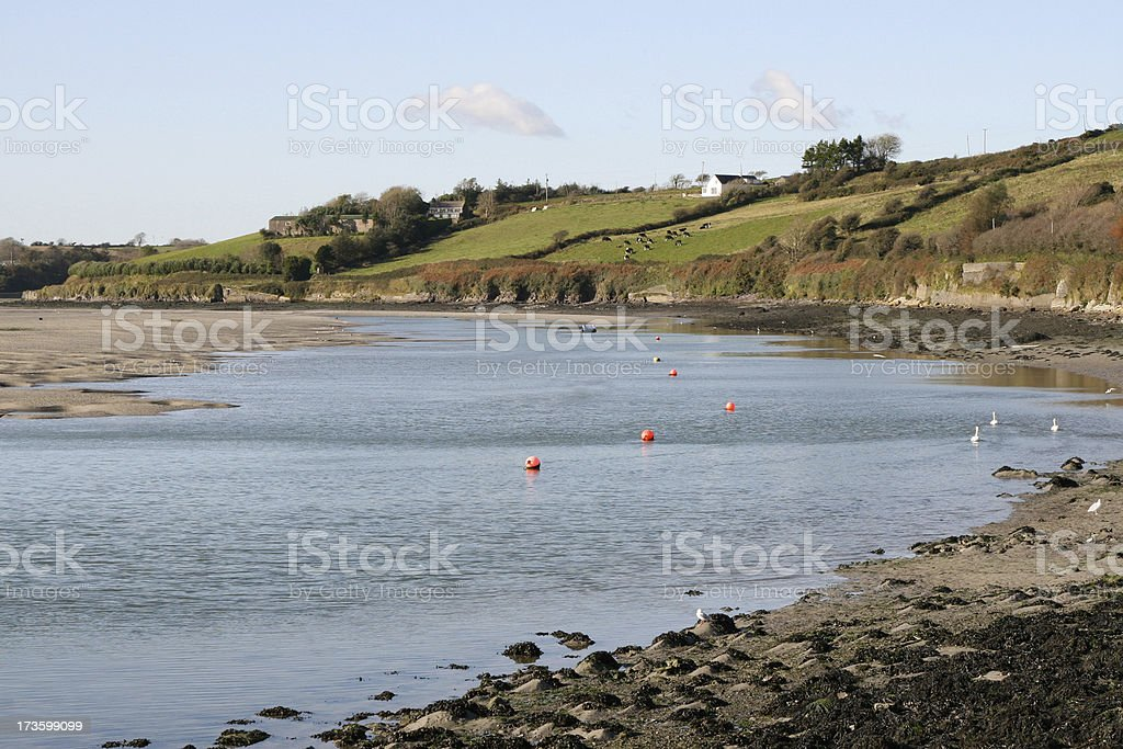Estuary, Clonakilty, County Cork, Ireland stock photo