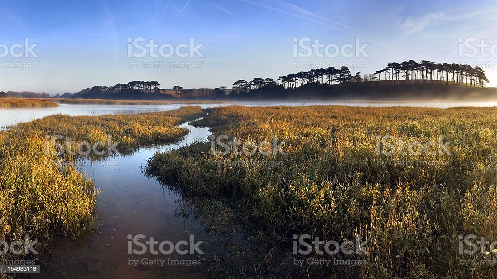 Estuary Sunrise royalty-free stock photo