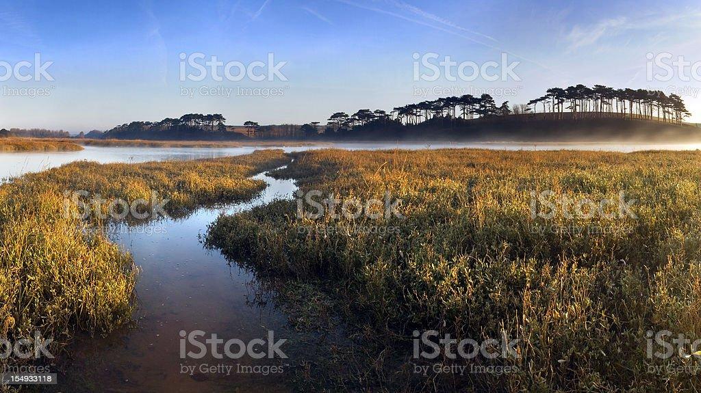 Estuary Sunrise stock photo