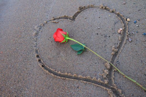 geätzte herzform im sand und eine rote rose - outdoor braut duschen stock-fotos und bilder