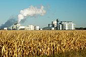 istock Ethanol 3 92024215