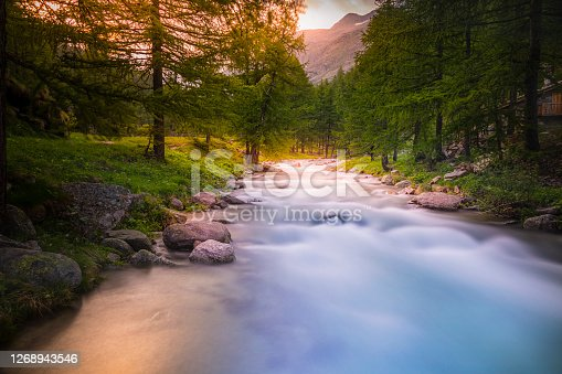 istock Ethereal blurred river stream and pine woodland at springtime  – Gran Paradiso Alps – Italy 1268943546