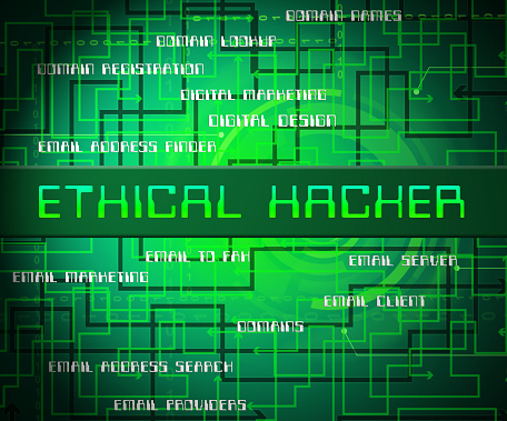 Ethical Hacker Tracking Server Vulnerability 2d Illustration