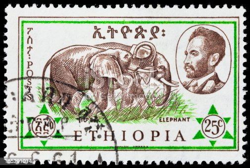 A 1961 Ethiopia postage stamp with an illustraton of two elephants and a profile of Emperor Haile Selassie.