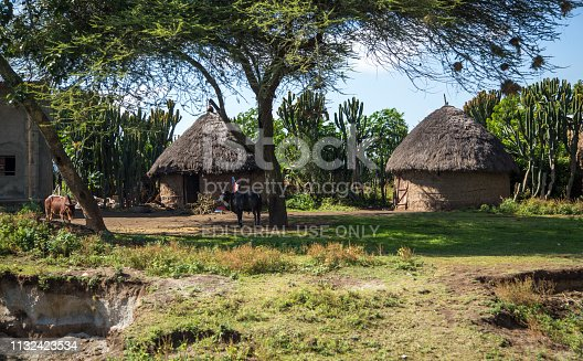 A group of traditional huts in a rural area of southern Ethiopia.