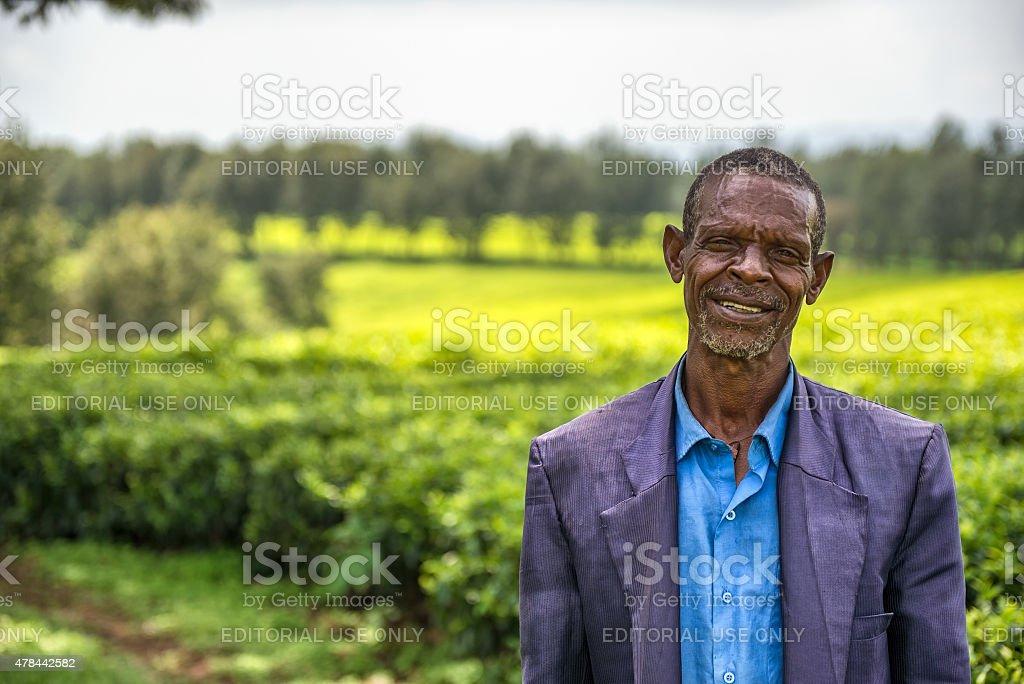 Ethiopian farmer on a tea plantation near Jimma, Ethiopia stock photo