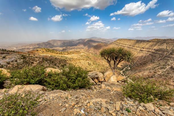 Ethiopian landscape, Ethiopia, Africa wilderness stock photo