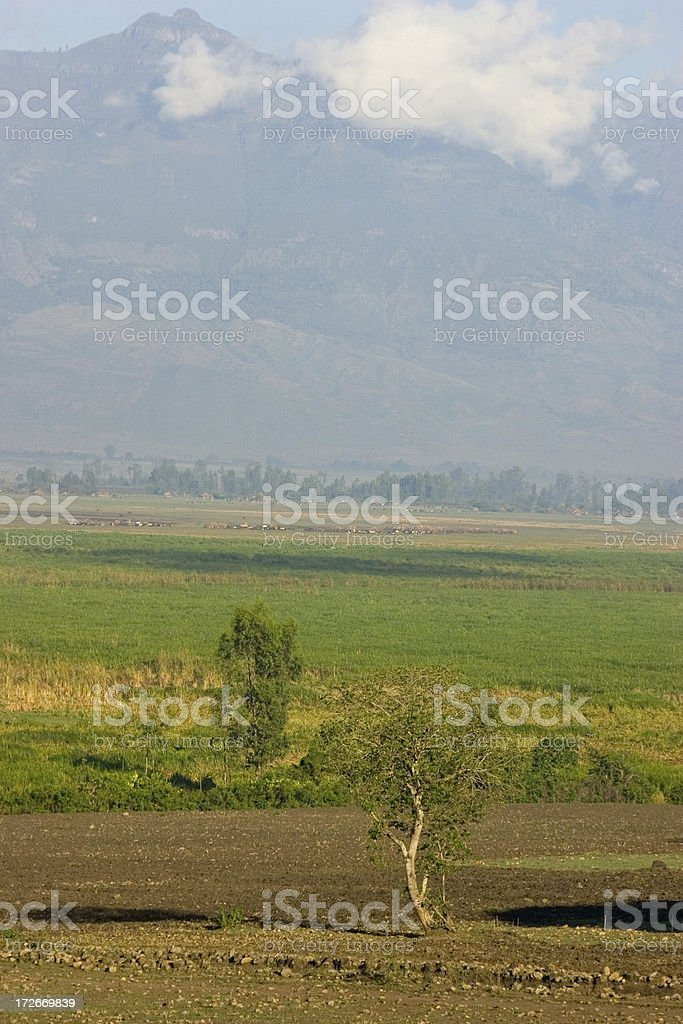 Ethiopian Mountain landscape royalty-free stock photo