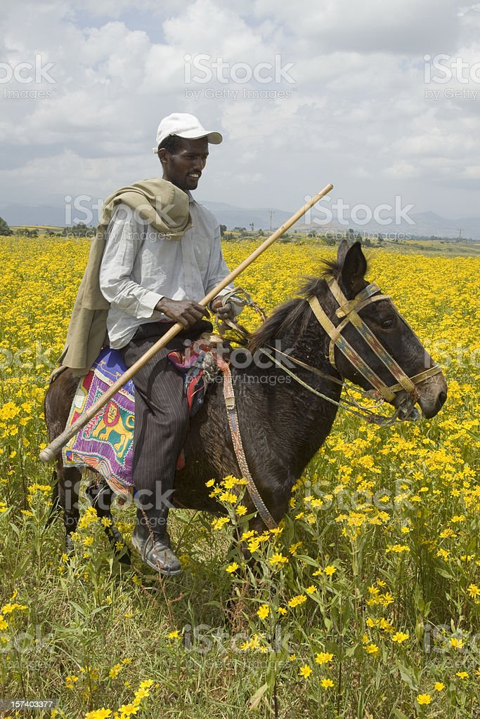 Ethiopian traditional horsebackrider royalty-free stock photo
