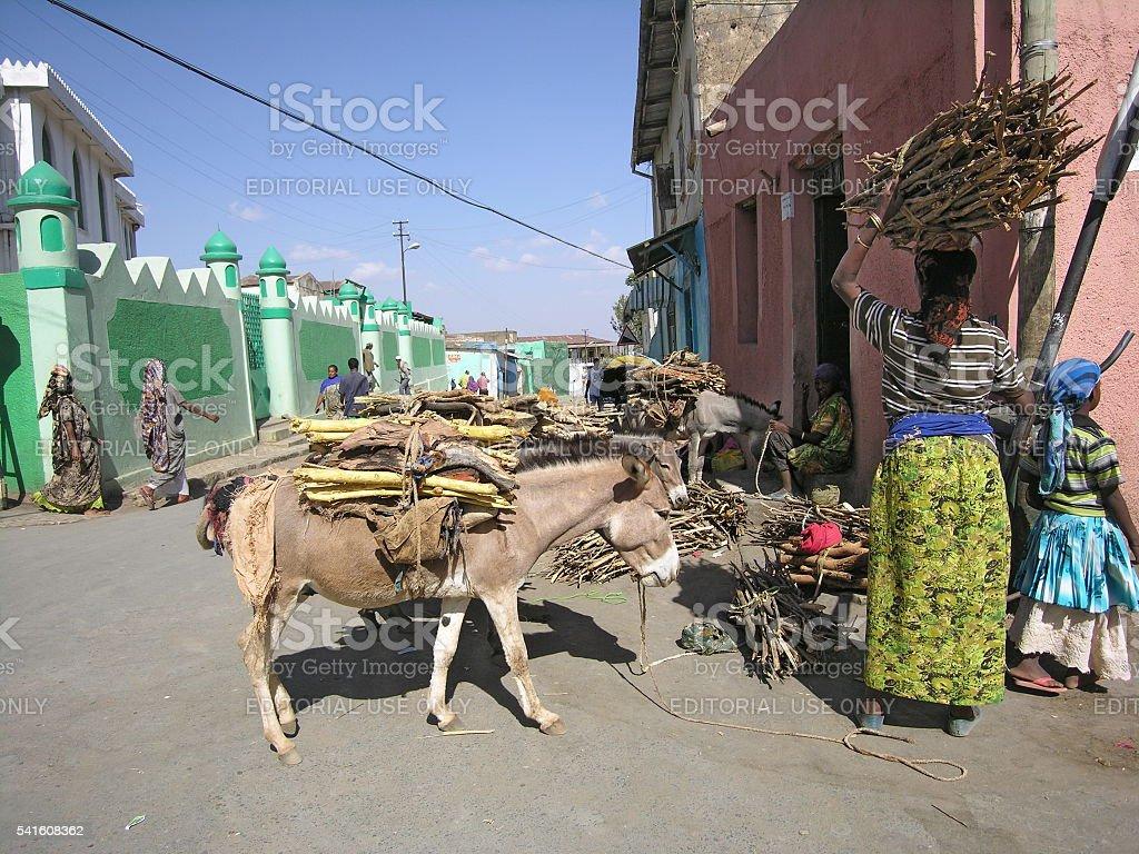 harar äthiopien
