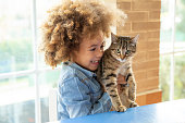Ethnic kid girl playing with cat in a table