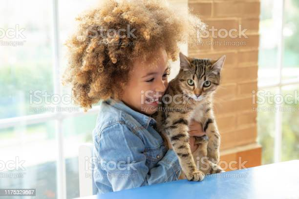 Ethnic kid girl playing with cat picture id1175329867?b=1&k=6&m=1175329867&s=612x612&h=bhot hffxm0tlxxtwip9tt8fof 9 nuvyuewnfvmk3w=