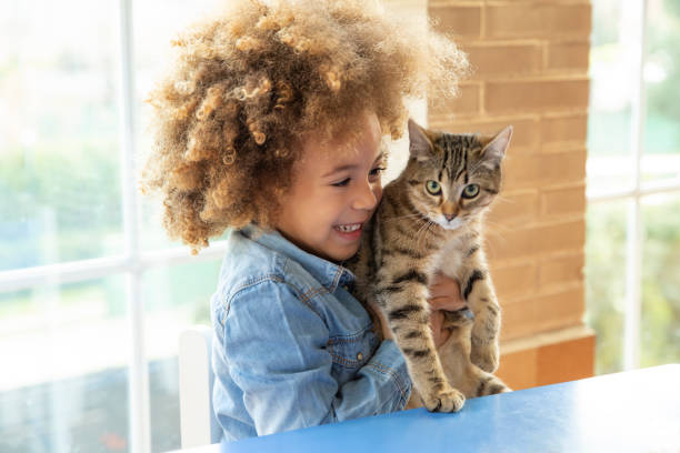 Ethnic kid girl playing with cat picture id1175329867?b=1&k=6&m=1175329867&s=612x612&w=0&h=a67tso5okxunyh2h0cz5z u71laz9zkgwxnl uczbt4=