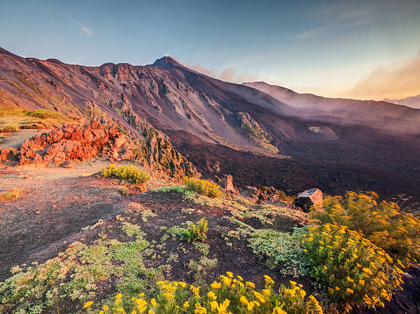 Etna volcano, Sicily Etna Volcano in Sicily, Italy with colorful flowers on foreground catania stock pictures, royalty-free photos & images