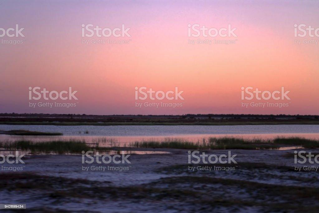 etosha national park, namibia, africa stock photo