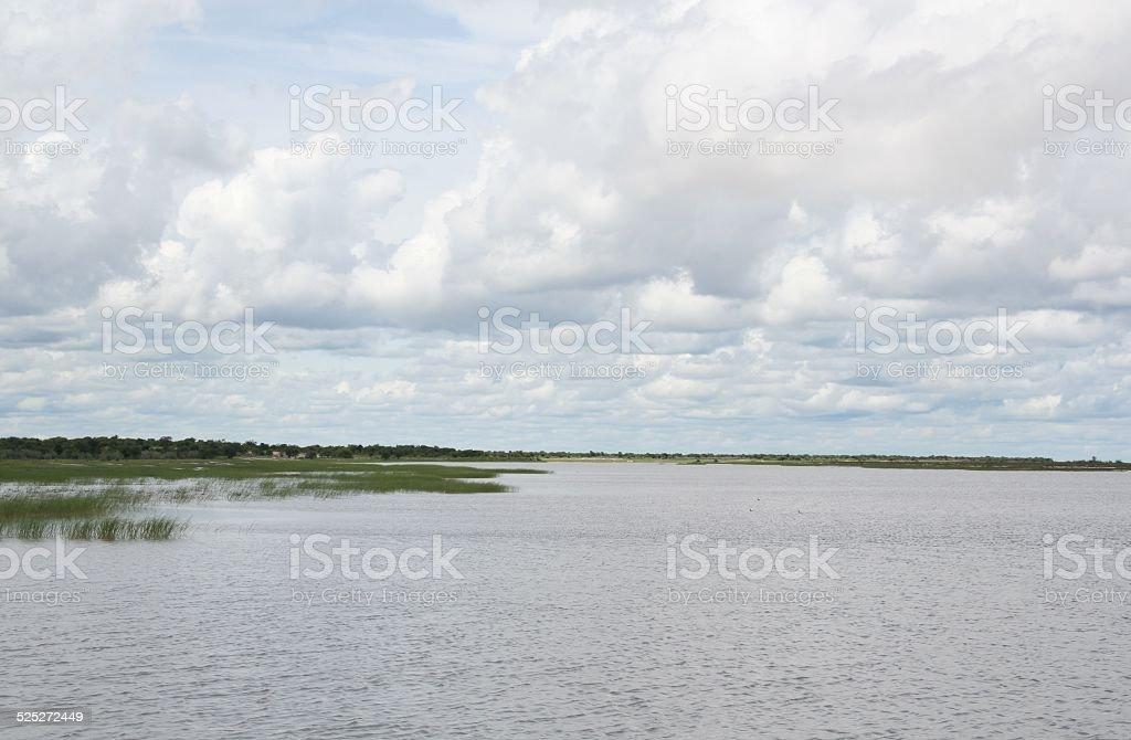 Etosha Salt Pan with Water, Green Landscape, Rainy Season, Namibia stock photo