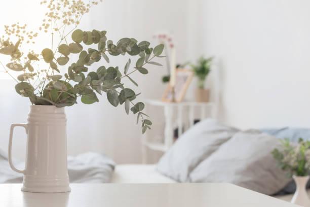 eucalyptus and gypsophila  in jug  in white bedroom stock photo