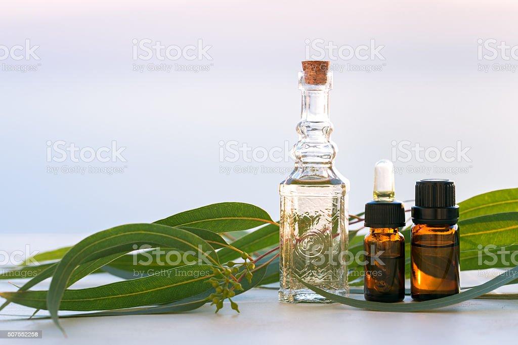 Eucalyptus aromatherapy essential oils in bottles stock photo
