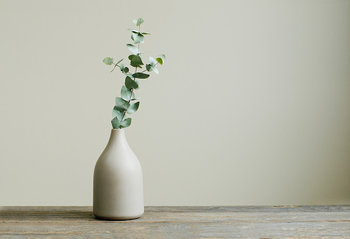 Eucalyptus branch in a vase on the rustic wooden table
