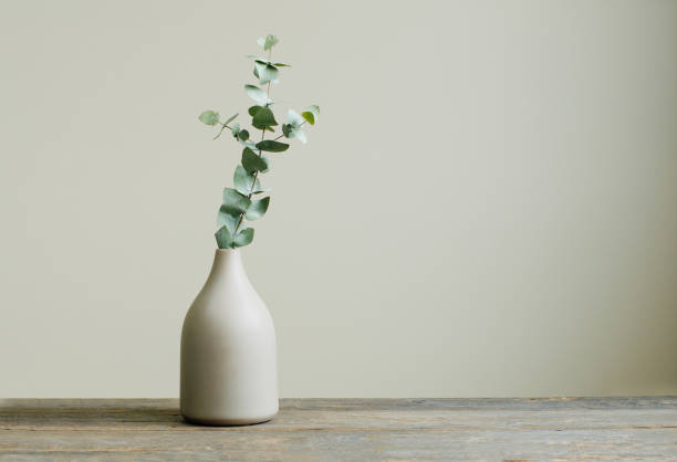 Eucalyptus branch in a vase on the rustic wooden table Detail of contemporary cozy interior. Eucalyptus branch in a vase on the rustic wooden table. Blank space for text on the wall. still life stock pictures, royalty-free photos & images