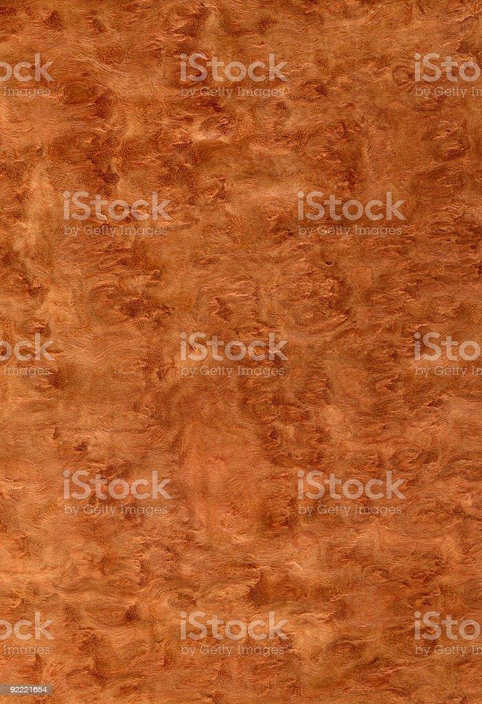 Eucalyptus Burl - Wood Texture Series royalty-free stock photo