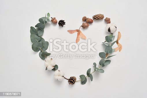 istock Eucalyptus leaves heart frame love on white background with cones, acorn and place for your text. Autumn wreath made of leaf branches. Flat lay, top view 1190579071