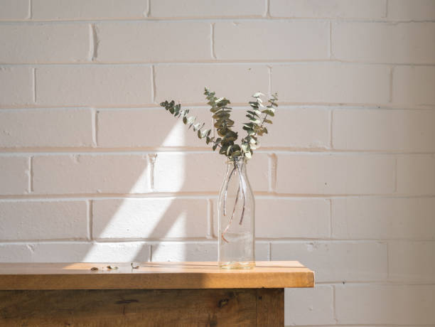 Eucalyptus leaves in glass bottle on wooden table stock photo
