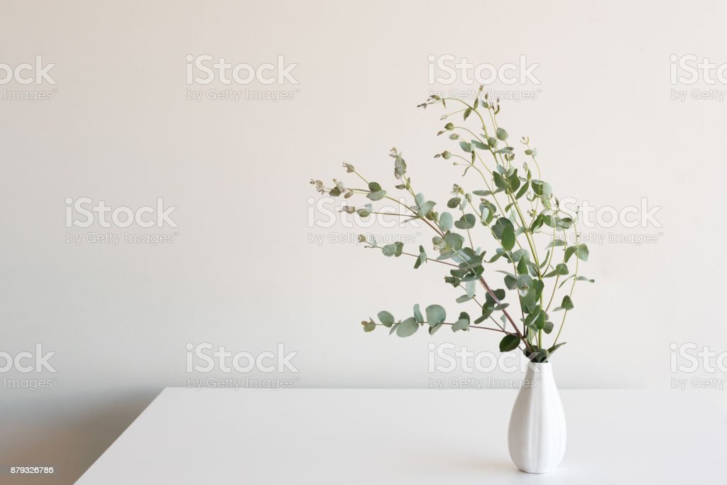 Eucalyptus Leaves In Vase On Table Stock Photo More Pictures Of