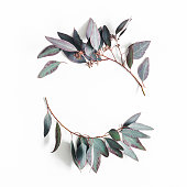 istock Eucalyptus leaves on white background. Wreath made of eucalyptus branches. Flat lay, top view, copy space, square 1127489607