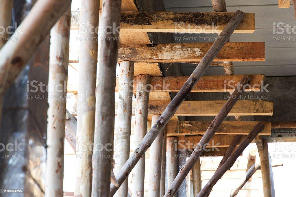 eucalyptus prop stock photo