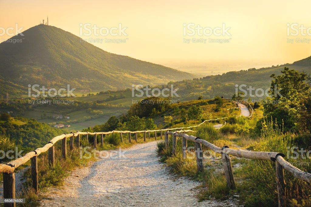 Euganean Hills yellow sunset Pianoro Mottolone trail Padua Italy Veneto stock photo