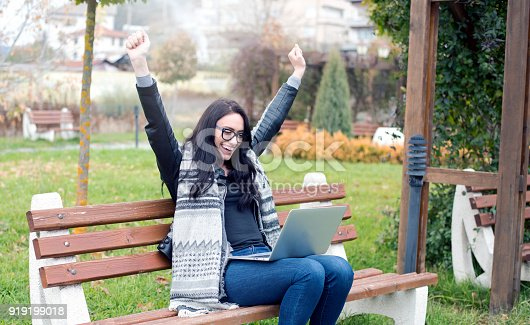 493712130 istock photo Euphoric winner watching a laptop 919199018