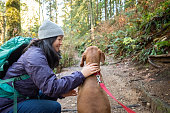 Young woman stops on trail to pet her Vizsla dog.  North Vancouver, British Columbia, Canada.