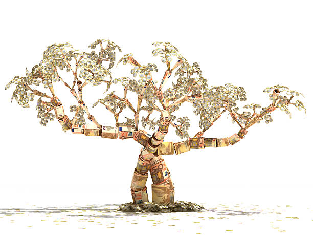 Euro Money Tree stock photo